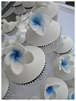 frangipani wedding-birthday cupcakes
