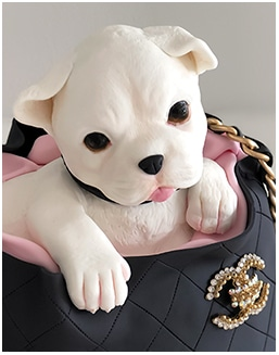 chanel handbag with chihuahua