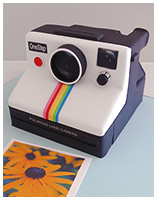 polaroid camera novelty cake